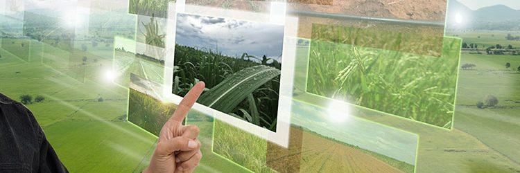 agricoltura-milioni-euro-droni-campo-sensori-trattori-1