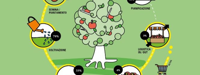 Smart Agrifood 11 marzo - albero con varie icone disegnate