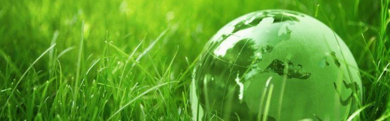 giornata-mondiale-ambiente-1024x682-800x400